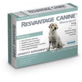 Resvantage canine 維蘆醇30粒(狗配方)