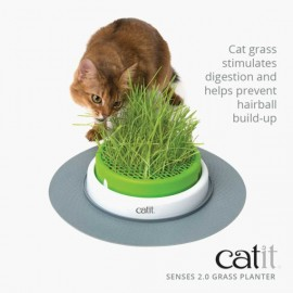 Cat It感官草園套件